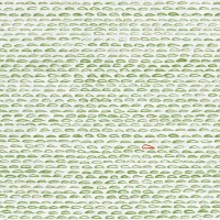 Finn Fabric Green